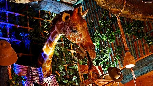 boutique disneyland paris boutique la girafe curieuse boutique disney
