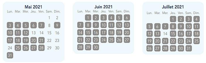 calendrier pass annuel magic flex pour disneyland paris